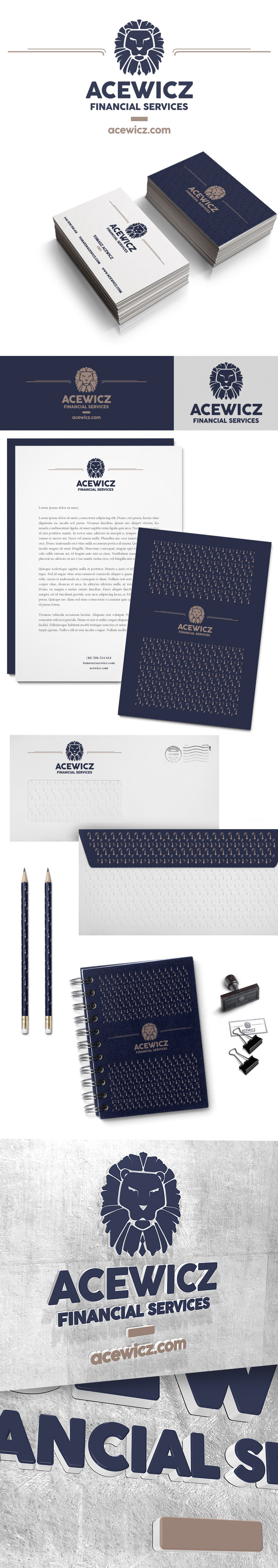 Corporate Identity Acewicz